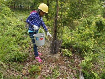 森林整備体験(施肥)