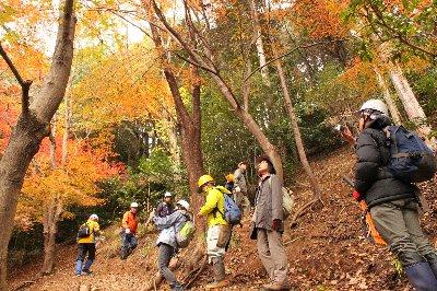 森林観察会