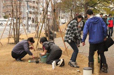 参加者による植樹
