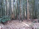 長岡京市浄土谷(京都乙訓ロータリークラブ)