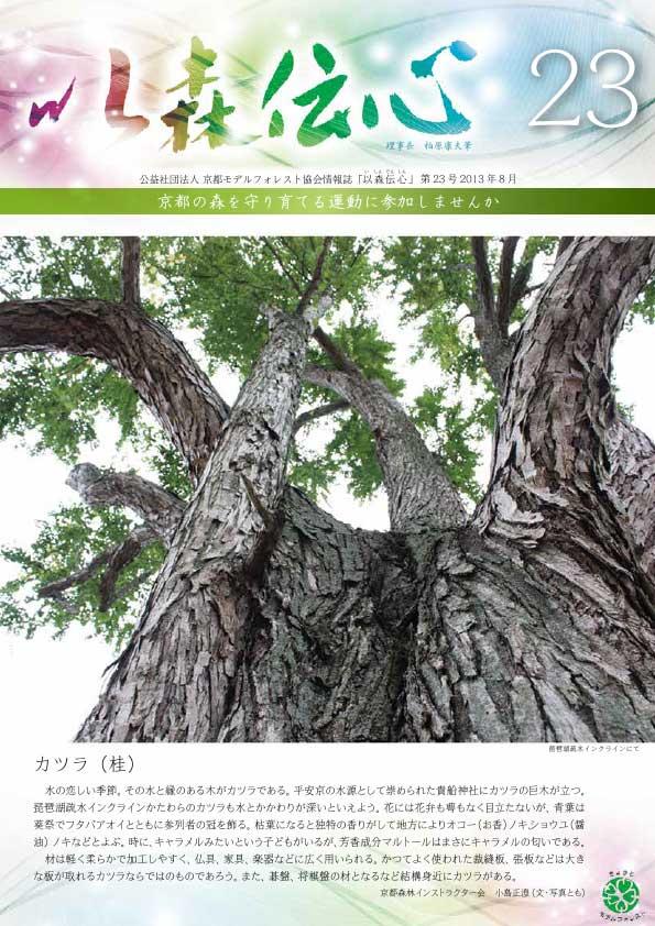 第23号(2013年8月)の表紙画像