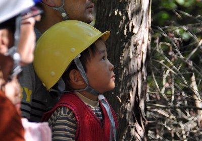 お子さんも森の手入れを体験
