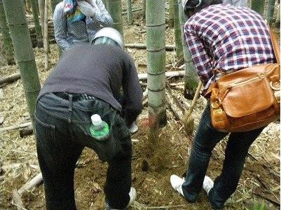 筍掘りも大変