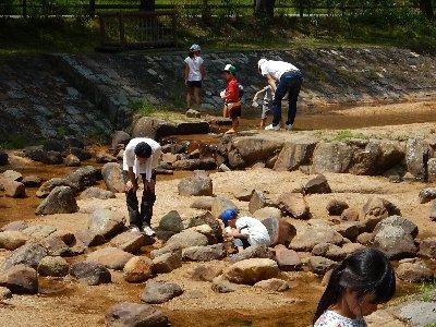 猛暑日は川遊び日和
