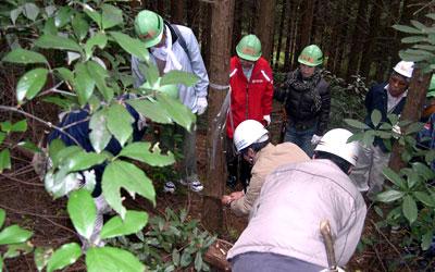 体験教室の様子:指導者のもとで伐採中