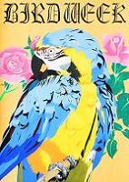 愛鳥12MF