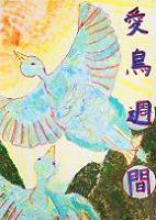 愛鳥19努力