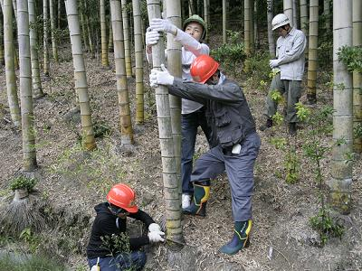 竹林整備実習