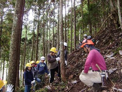 林業研究グループの方の指導で間伐に挑戦