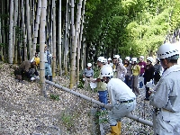 3回竹林整備