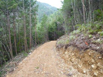 作業路の整備