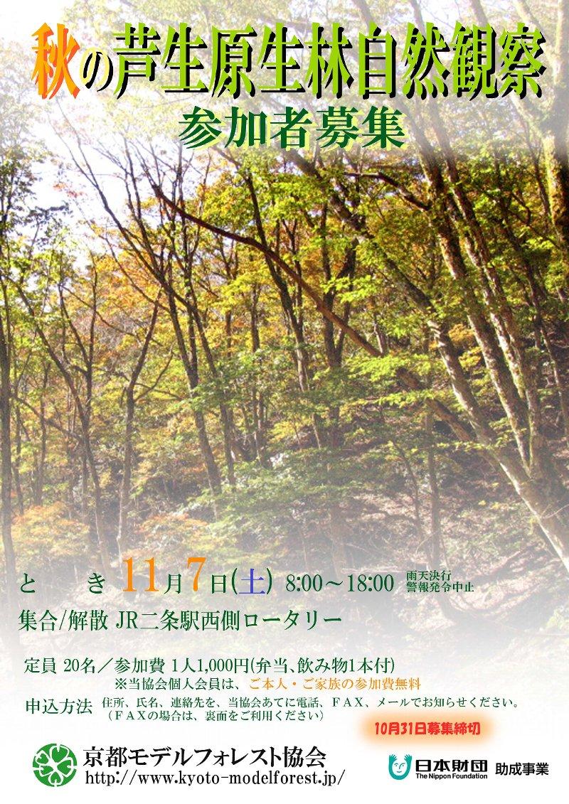 芦生チラシ(表)