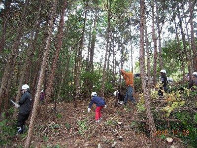 子供も伐採に参加