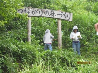 「つながりの森づくり」看板