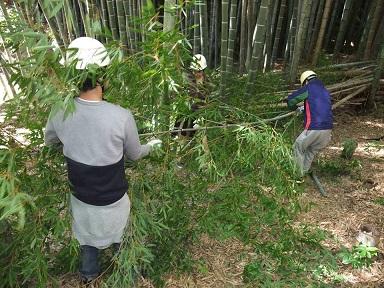 竹の環②小