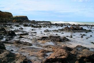 海岸写真1