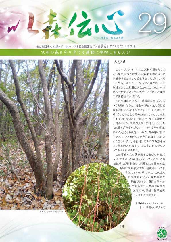 第29号(2014年2月)の表紙画像