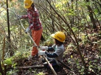 子ども達も木の伐採を手伝います。