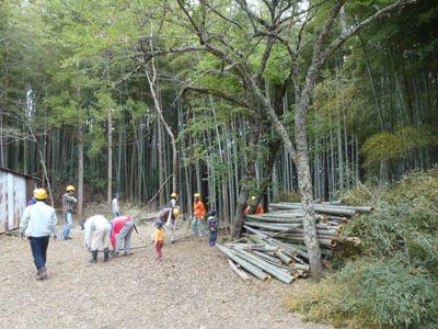 伐採竹が山積み。努力の成果!