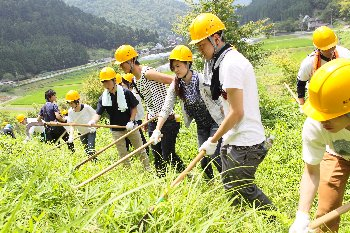 下草刈りに挑戦中の学生たち