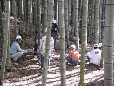 竹の環プロジェクト②