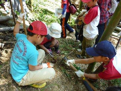 第18回竹の子掘り