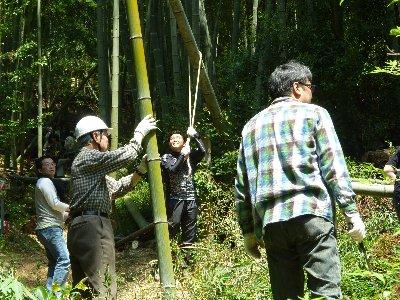 第18回竹伐採