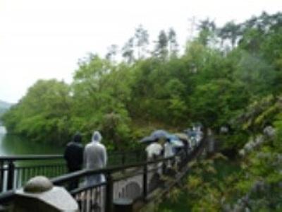 五月雨の降る中での自然観察