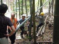 03竹伐採