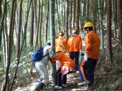 ヒノキ林にはびこる孟宗竹を力を合わせて伐採しています。