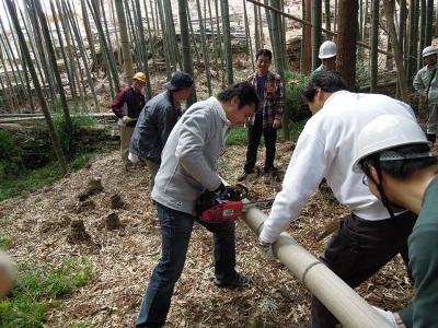 不要竹の伐採