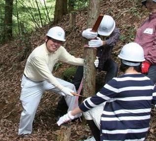間伐作業の様子