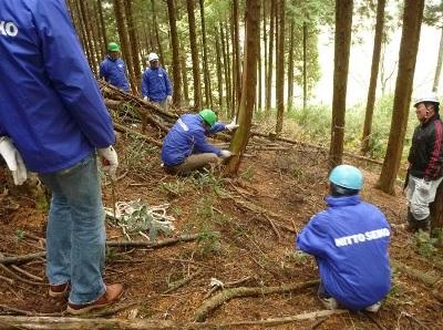 間伐方法の学習・体験の様子