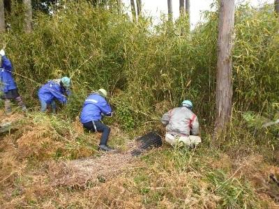 林縁の笹刈り作業の様子