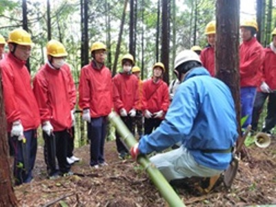 伐採指導の様子