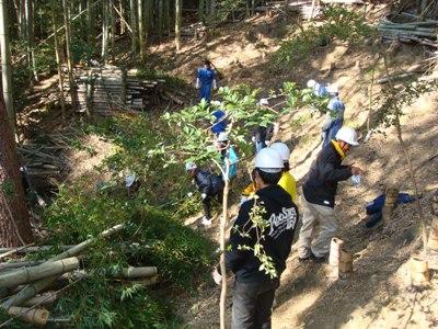 竹の伐採・整理