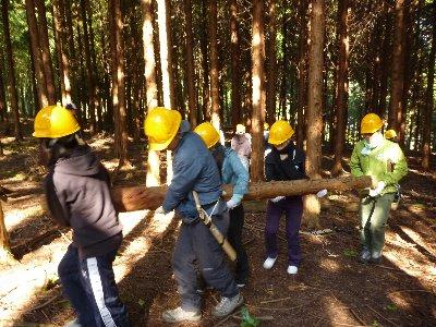 伐採したヒノキ材の運び出し。切り立ての材は重〜い!