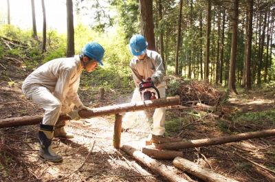 間伐した木を切ります!