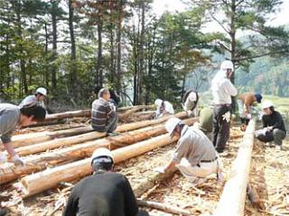 作業小屋に使用する間伐材の皮剥ぎの様子