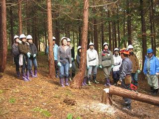 京都府立大学生へ間伐作業の説明をしている様子