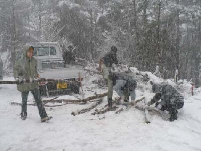 間伐材の薪づくり
